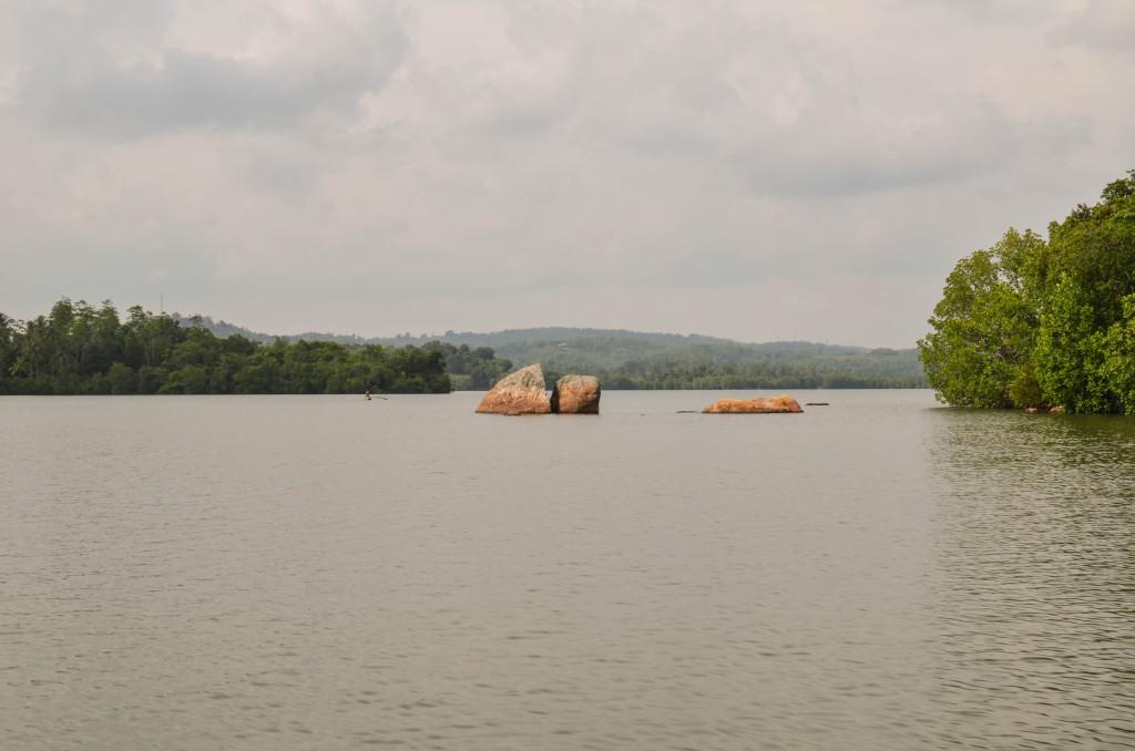 Озеро Коггала шри ланка фото
