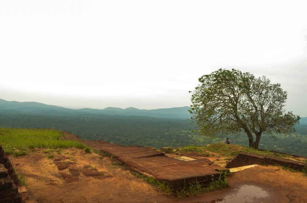 Вид с горы Сигирия