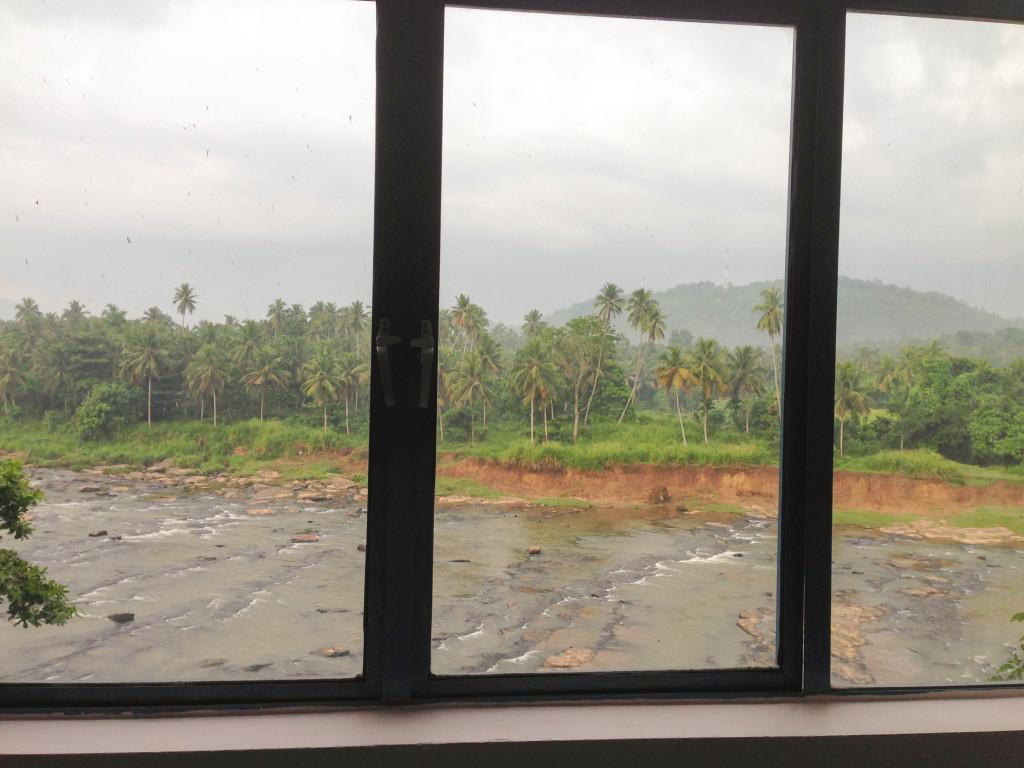 Вид из окна Hotel Elephant Park еще один