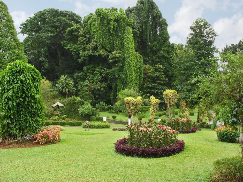 Ботанический сад Канди фото