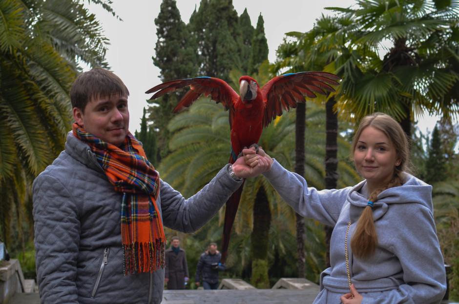 Дендрарий Сочи зимой попугай