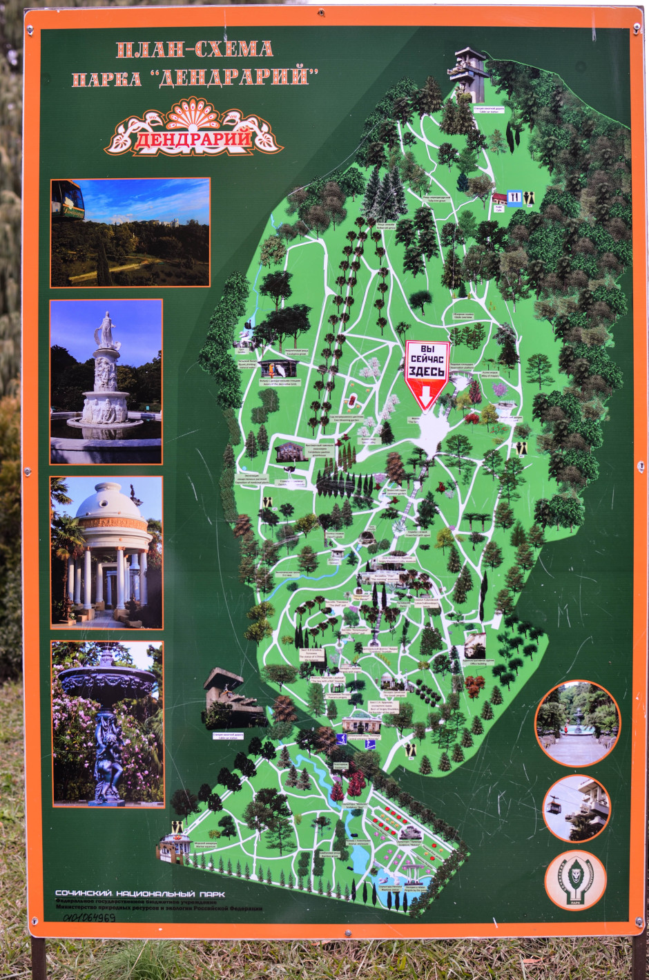 Карта Сочи дендрарий