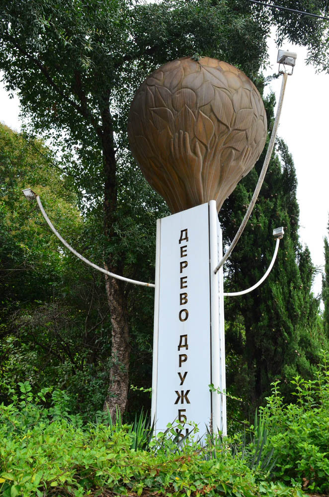 Сад музей Дерево Дружбы Сочи